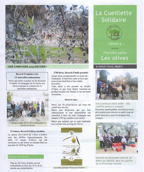 Newsletter Olives 0001 800x600